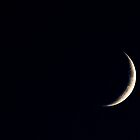 moon by Hallvor