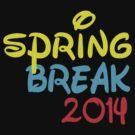 SPRING BREAK 2014 by mcdba