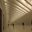 The New World Trade Center Passenger Concourse, Lower Manhattan, New York City  by lenspiro