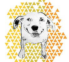 smiling dog by grafikgirl