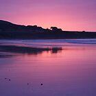 Delightful pink  by Eunice Atkins