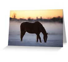 First Light on the Frosty Farm Greeting Card