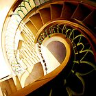 The Ammonite Staircase by Imi Koetz
