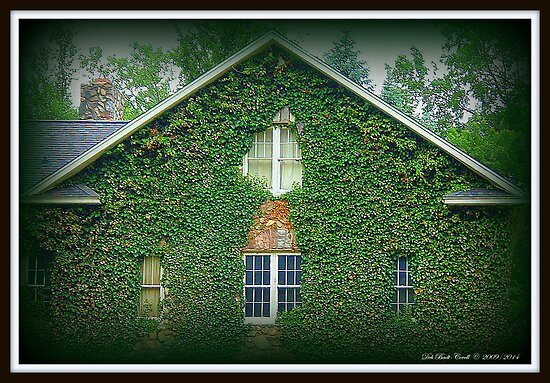 Charming Charlton Park Home - Hastings, MI by Deb  Badt-Covell