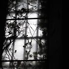 A church window overgrown by Anna Goodchild