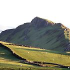 Chrome Hill from High Edge by Paul  Green