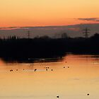 Sunset by Blayde666