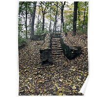 Forest Steps Poster