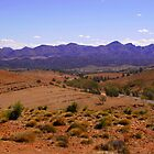 Mountains of the Australian Outback by jwwallace