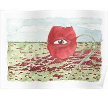 In a field of blind poppies, one eye is king Poster