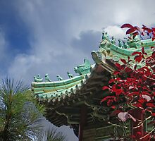 China Pavilion Golden Gate Park by David Denny
