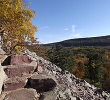 Rocky Steps - Devils Lake by Timothy  Ruf