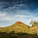 The Beauty of the Outback by Mieke Boynton