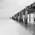 No Line on the Horizon by Bas Van Uyen