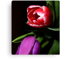 The Drunken Tulip Canvas Print