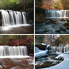 Oneida Falls In Every Season by Gene Walls