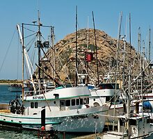 Morro Bay Harbor by Martha Sherman