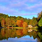 Emerald Lake, The Dandenongs by Bas Van Uyen