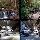 Delaware Falls In Every Season by Gene Walls