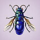 Wasp by Brittany LeBold