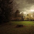 THE LIGHT IN THE STORM by leonie7