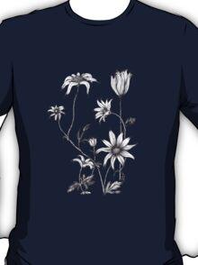 Flannel Flower - Actinotus helianthe T-Shirt