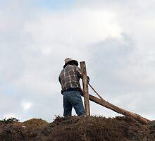 Farmer Building a Fence by rhamm