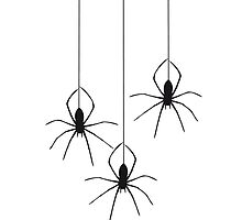 Cool Spider Design by Style-O-Mat