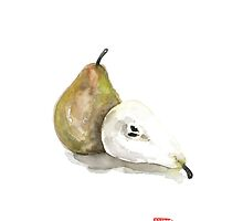 Pears Green Yellow Fruit Brown Pear Fruits Kitchen Watercolor Painting by Johana Szmerdt
