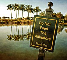Don't Feed the Alligators by ImageFiddler