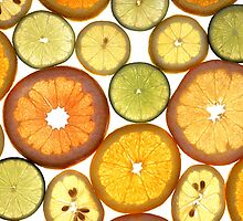 Citrus Fruits by cadellin