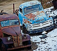 Studebaker and Ford at the Fence by Lee Craig