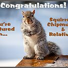 Squirrels, Chipmunks & Relatives Banner by Mikell Herrick