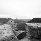 Canyon Rocks in Black and White by Denise N Young
