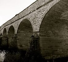 Richmond Bridge, Tasmania by missanathema