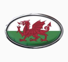 Wales Flag in Glass Oval by Ovals