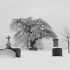 Eerily Peaceful in  Black & White by Martha Medford