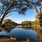 The Tranquil Bogan River  by David Haworth