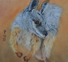 Wallaby by Beverley Jacobs