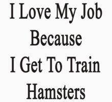 I Love My Job Because I Get To Train Hamsters  by supernova23