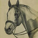 Charcoal Pinto by WildestArt