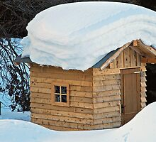 Snow on the roof by Arie Koene