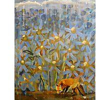 Fox Flowers Photographic Print