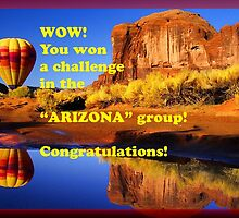 Challenge Banner for Arizona group by Ann Warrenton