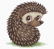 Hedgehog which looks at back by Toru Sanogawa
