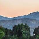 San Diego County Morning by heatherfriedman