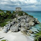 The Ruins of Tulum by Polly Peacock