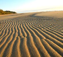 Sand Corrugations by Guyzimijz