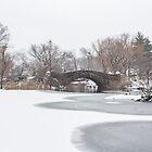 Gapstow Bridge by Nicholas Jermy