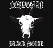 Norwegian Black Metal by Luke Kegley